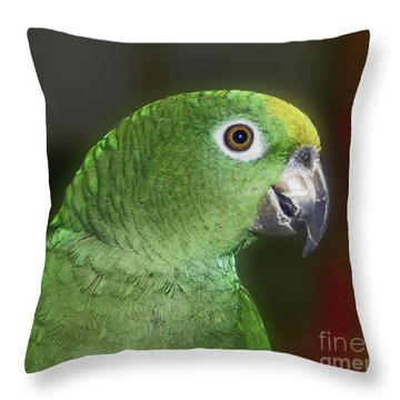 Yellow Naped Amazon Parrot Throw Pillow
