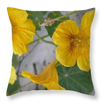 Yellow Nasturtium Throw Pillow