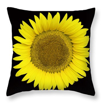 Yellow On Black Throw Pillow