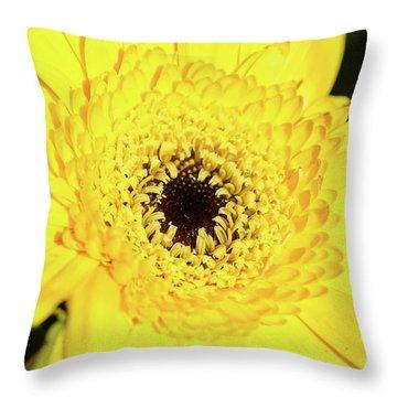 Yellow Pedal Throw Pillow