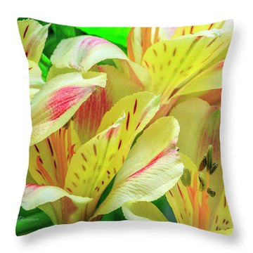 Throw Pillow featuring the photograph Yellow Peruvian Lilies In Bloom by Richard J Thompson