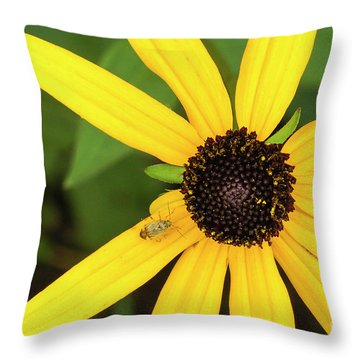 Yellow Petaled Flower With Bug Throw Pillow