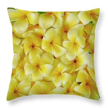Yellow Plumerias Throw Pillow