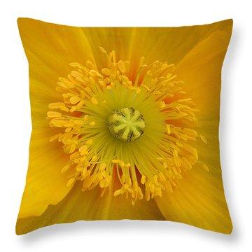 Yellow Poppy Flower Center Throw Pillow