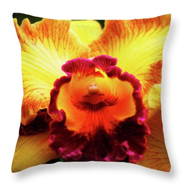 Yellow-purple Orchid Throw Pillow
