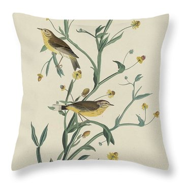Yellow Red-poll Warbler Throw Pillow