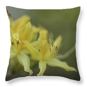 Yellow Rhodo Throw Pillow