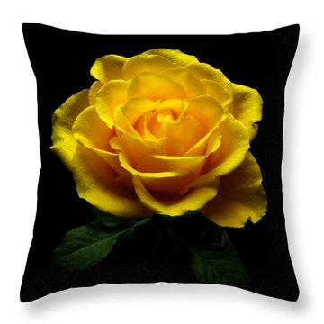 Yellow Rose 4 Throw Pillow