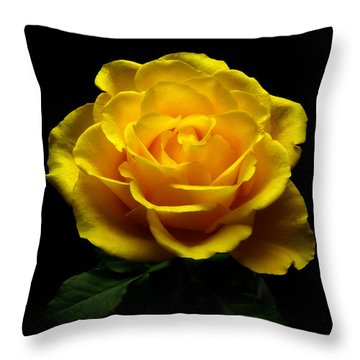 Yellow Rose 4 Throw Pillow