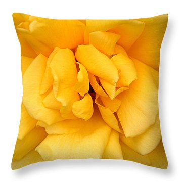 Throw Pillow featuring the photograph Yellow Rose by Bob Wall