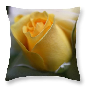 Yellow Rose Bud Flower Throw Pillow by Jennie Marie Schell