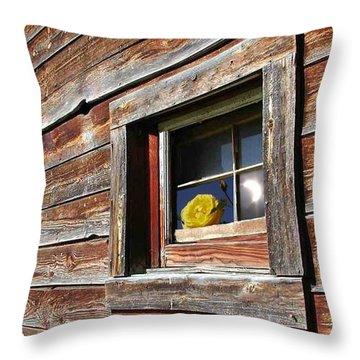 Yellow Rose Eclipse Throw Pillow by Tim Allen