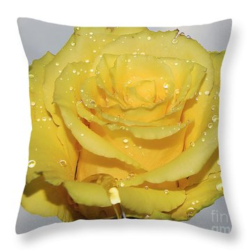 Throw Pillow featuring the photograph Yellow Rose by Elvira Ladocki