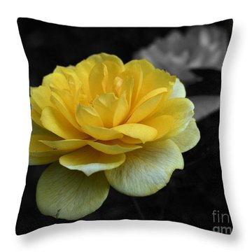 Yellow Rose In Bloom Throw Pillow