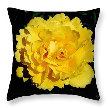 Yellow Rose Kissed By The Rain Throw Pillow
