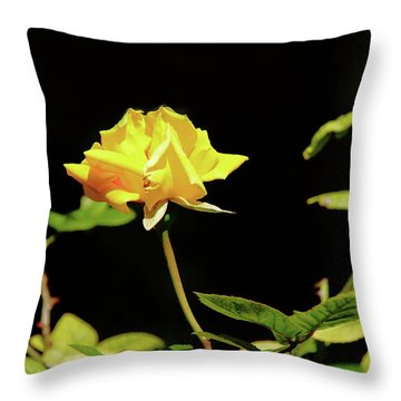 Yellow Rose  Throw Pillow