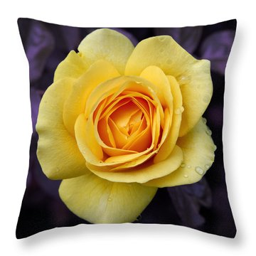 Throw Pillow featuring the photograph Yellow Rose Square by Howard Bagley