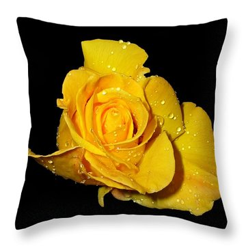 Yellow Rose With Dew Drops Throw Pillow by Patricia Barmatz