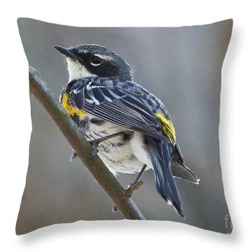 Yellow-rumped Warbler Portrait Throw Pillow