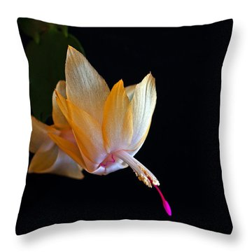 Yellow Schlumbergera Or Christmas Cactus Throw Pillow