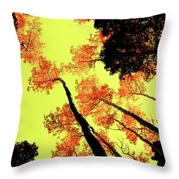 Throw Pillow featuring the photograph Yellow Sky, Burning Leaves by Kevin Munro