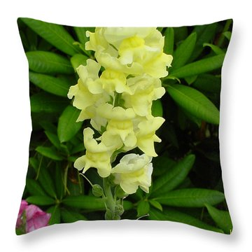 Yellow Snapdragon Throw Pillow by Shirley Heyn