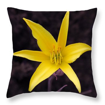 Throw Pillow featuring the photograph Yellow Star by Howard Bagley