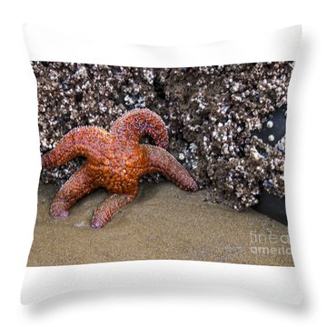 Orange Starfish On Beach #4 Throw Pillow