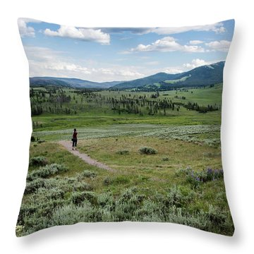 Throw Pillow featuring the photograph Yellow Stone Mountains by Mae Wertz