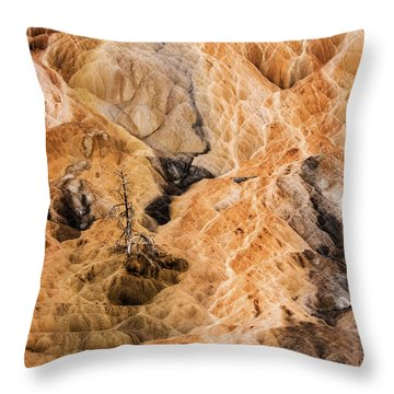 Throw Pillow featuring the photograph Yellow Stone National Park Abstract by Mae Wertz