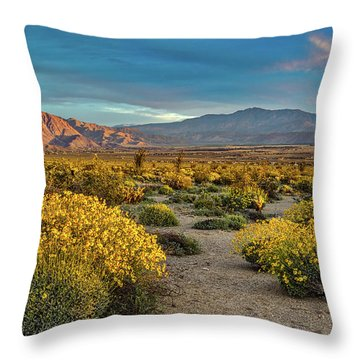 Throw Pillow featuring the photograph Yellow Sunrise by Peter Tellone