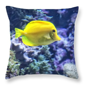 Yellow Tang Throw Pillow
