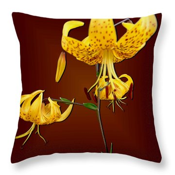 Yellow Tiger Lilies Throw Pillow by Tara Hutton
