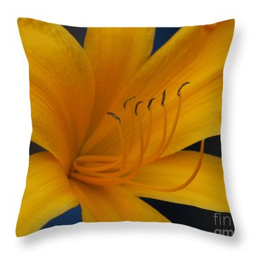 Yellow Tiger Lilly Throw Pillow