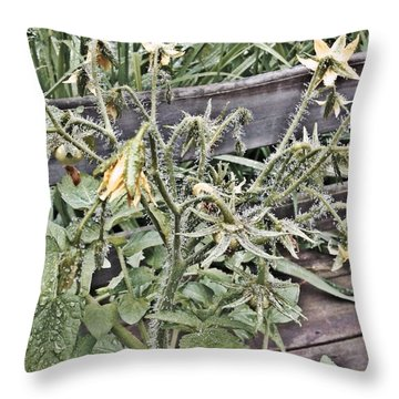Yellow Tomato Flowers Throw Pillow