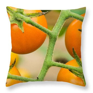 Throw Pillow featuring the photograph Yellow Tomatoes by Paul Miller