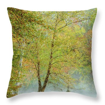 Throw Pillow featuring the photograph Yellow Trees by Iris Greenwell