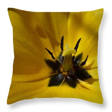 Yellow Tulip 1 Throw Pillow