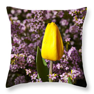 Yellow Tulip In The Garden Throw Pillow by Garry Gay