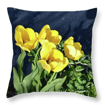 Yellow Tulips Throw Pillow by Kathleen Stephens
