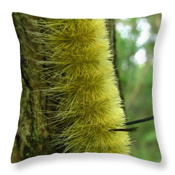 Yellow Tussock Throw Pillow