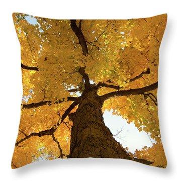 Yellow Up Throw Pillow