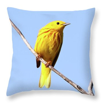 Yellow Warbler #1 Throw Pillow by Marle Nopardi