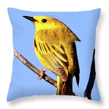 Yellow Warbler #2 Throw Pillow by Marle Nopardi