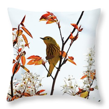 Yellow Warbler Throw Pillow by Debbie Oppermann