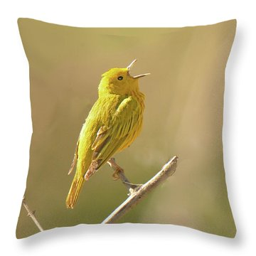 Yellow Warbler Song Throw Pillow by Alan Lenk