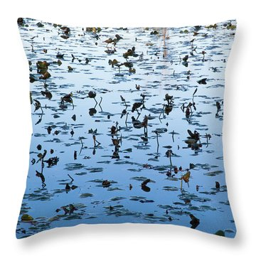 Yellow Water Lilies In Deep Silhouette Throw Pillow