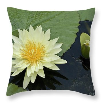 Yellow Water Lily With Bud Nymphaea Throw Pillow by Heiko Koehrer-Wagner