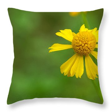 Yellow Wildflower Throw Pillow by Christopher L Thomley