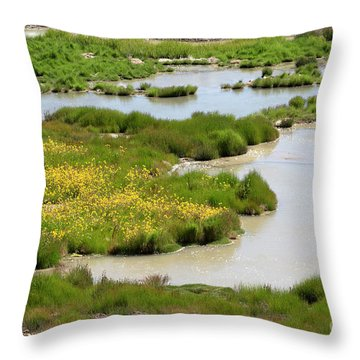 Yellow Wildflowers At Mud Volcano Area In Yellowstone National Park Throw Pillow by Louise Heusinkveld